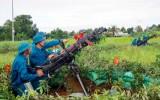 Thủ Thừa: Vững vàng thế trận phòng không nhân dân