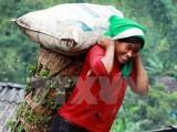 Phụ nữ Việt Nam đóng góp 110 triệu giờ làm việc không lương mỗi ngày
