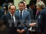 Hội nghị thượng đỉnh EU bàn về khủng hoảng di cư và trừng phạt Nga