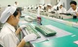 Việt Nam xuất siêu 3,52 tỷ USD trong 10 tháng