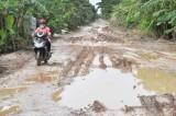 Cần sớm sửa chữa đoạn đường qua khu dân cư Rọc Chanh