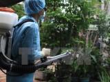 Thành phố Hồ Chí Minh họp khẩn về diễn biến dịch Zika trên địa bàn
