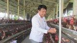 Hiệu quả kinh tế từ các trang trại, gia trại