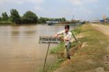 Dự án nhà máy giấy Đại Dương: Nguy cơ ô nhiễm sông Tiền