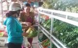 Điểm bán thực phẩm an toàn: Cung chưa đủ cầu