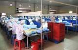 Long An: Kim ngạch xuất nhập khẩu tiếp tục tăng