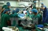 Việt Nam lần đầu thành công trong ghép thận không cùng huyết thống