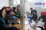 Trao giải thưởng Ngân hàng tiêu biểu tại Việt Nam năm 2016