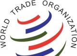 Các thành viên WTO chưa đạt được đồng thuận về thỏa thuận EGA