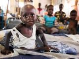 1/4 trẻ em trên thế giới bị ảnh hưởng bởi xung đột và thiên tai