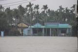 11 người chết, 5 người bị thương do mưa lũ