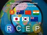 RCEP thông qua những điều khoản về doanh nghiệp vừa và nhỏ