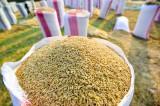 Ưu đãi đặc biệt thuế 0% với gạo và lá thuốc lá khô từ Campuchia