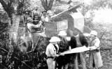 Kinh nghiệm quý từ sự kiện Toàn quốc kháng chiến vẫn nguyên giá trị