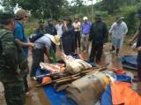 Vụ nổ súng làm 3 người chết: Bắt tạm giam GĐ công ty Long Sơn