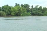 Chìm xuồng ở Tiền Giang, 2 người tử vong