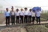 Đoàn chuyên gia Israel khảo sát và lập phương án trồng rau công nghệ cao tại huyện Cần Giuộc