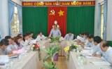 Lãnh đạo tỉnh làm việc với huyện Cần Giuộc về công tác bồi thường giải phóng mặt bằng, thu hút đầu tư