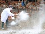 Xuất hiện 2 ổ dịch cúm gia cầm tại Bạc Liêu và Quảng Ngãi