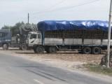 Long An: Nhiều xe chở mía bị xử phạt