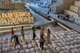 Bộ Công Thương lập đoàn xác minh phản ánh tiêu cực trong xuất khẩu gạo