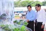Phát triển nông nghiệp ứng dụng công nghệ cao - Nhiệm vụ rất quan trọng, mang tính lâu dài