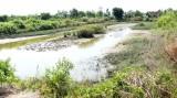 Tân Chánh: Gần 200ha ao tôm bị bỏ hoang
