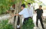 Bước đầu đi tìm Cây di sản Quốc gia: Cây me làng Ba Cụm trải qua 3 thế kỷ