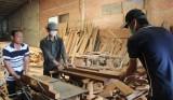 Huyện đoàn Tân Thạnh: Cùng thanh niên làm kinh tế