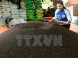 Ấn Độ chính thức bỏ lệnh cấm nhập 6 mặt hàng nông sản của Việt Nam