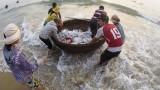 Quảng Trị chi trả hơn 482 tỷ đồng bồi thường do sự cố môi trường biển