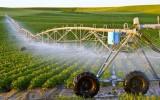 Tháng 4 này có hướng dẫn cho vay gói 100.000 tỷ trong nông nghiệp