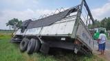 Bị ong tấn công, tài xế lái xe tải bay xuống ruộng
