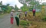 Sạch làng, đẹp ngõ với Ngày chủ nhật xanh