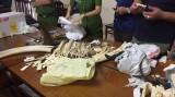 Bắt ba nghi phạm buôn sừng tê giác