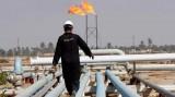 Giá dầu châu Á đi xuống sau số liệu về dự trữ dầu thô Mỹ tăng