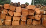 Việt Nam nói không với gỗ bất hợp pháp để xây dựng hình ảnh gỗ Việt