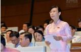 Đoàn đại biểu Quốc hội đơn vị tỉnh Long An đóng góp ý kiến Dự thảo Luật Trợ giúp pháp lý (sửa đổi)