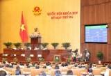 Kỳ họp thứ 3: Đại biểu Quốc hội biểu quyết thông qua ba dự án Luật