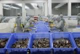 """Tôm Việt tìm đường """"bơi"""" vào các thị trường xuất khẩu khác ngoài Mỹ"""