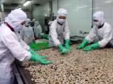 Australia sẽ siết chặt điều kiện nhập khẩu tôm từ ngày 07/7