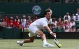 Djokovic và Federer dễ dàng vào vòng 2 Wimbledon 2017