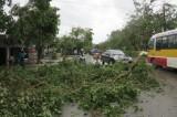 6 người tử vong, 3 người mất tích ở Nghệ An do bão số 2