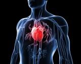 Thực phẩm nên ăn hàng ngày để ngăn ngừa các bệnh tim mạch