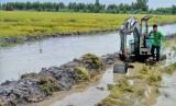 Long An: Các huyện Đồng Tháp Mười có hơn 27.000ha lúa bị lũ đe dọa