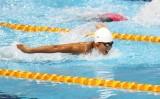 Ánh Viên xếp hạng 10 400m hỗn hợp cá nhân giải thế giới