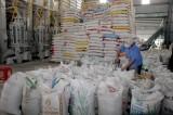 Tiềm năng xuất khẩu gạo trực tiếp vào Singapore còn khá lớn