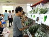 Khai trương Trung tâm cung ứng nông sản, thực phẩm an toàn
