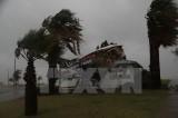 Mỹ: Siêu bão Harvey tràn vào Texas làm nhiều người thương vong