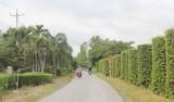 Kiến Tường: Dân vận khéo trong xây dựng nông thôn mới